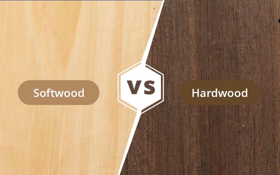macam macam kayu lunak - softwood vs hardwood