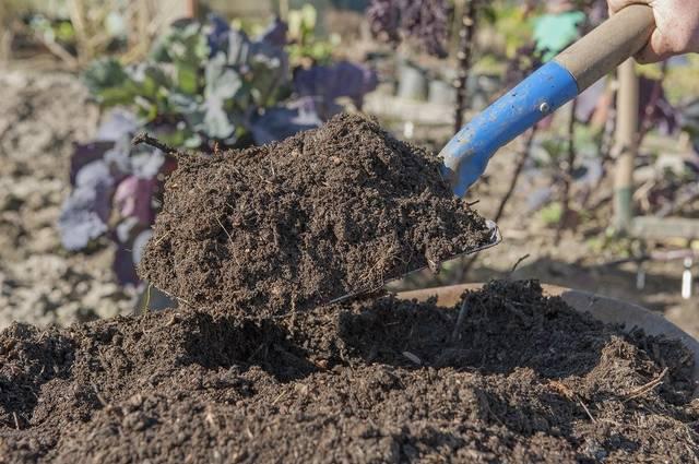 bahan untuk pupuk kompos