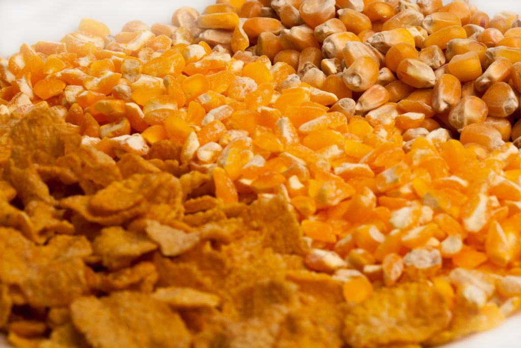 cara membuat emping jagung